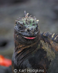 Smile please your on candid camera.